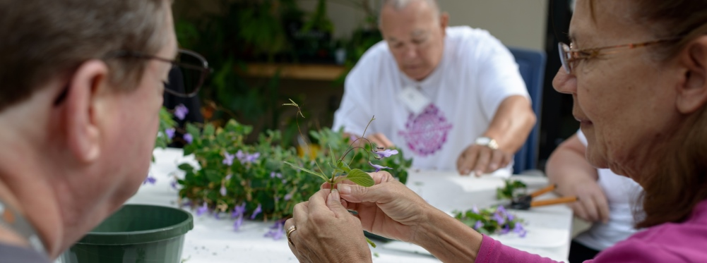 Horticultural therapy patients