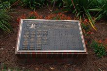 hippocratic-award-plaque