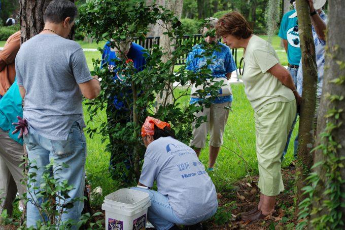 volunteer-decent-group-action-shot-outside